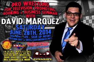 David-Marquez-Seminar-June 28th flyer