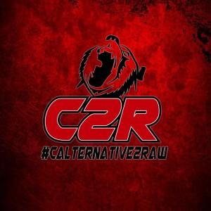 CalTernative 2 Raw 2015 flyer 2